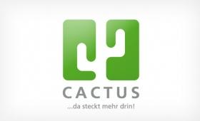 Cactus | orange D