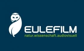 Logo Eulefilm
