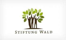 Stiftung Wald | MinneMedia