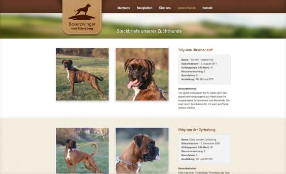 boxerzwinger-web-2