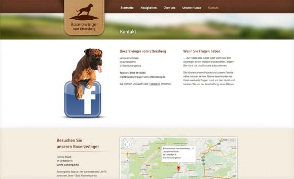 boxerzwinger-web-3